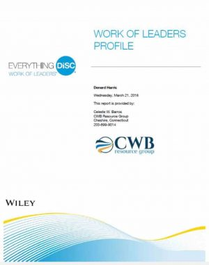 Everything DiSC ® Work of Leaders